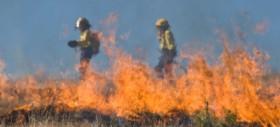 Cartiera a Pomezia in fiamme, ricorda l'incubo dell'Eco-X